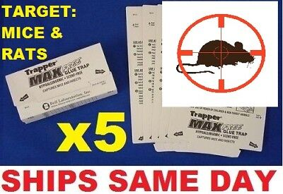 5 x TrapperMax Professional sticky Cockroach Spider Mouse Insects traps