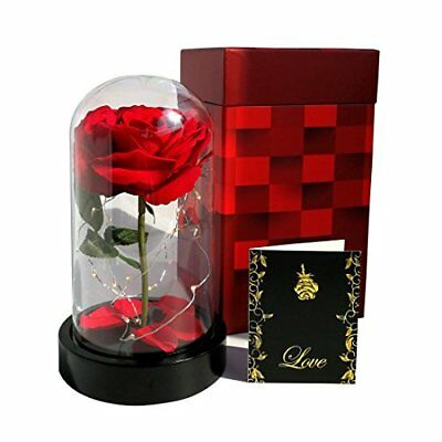 "Homeseasons "" Beauty and the Beast ""- Enchanted LED Red Rose in Glass Dome"