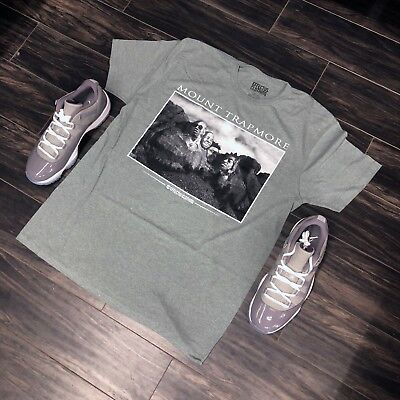 e15231d35983 SHIRT TO MATCH Air Jordan Cement Retro 5 s. Cement for Greatness Tee ...