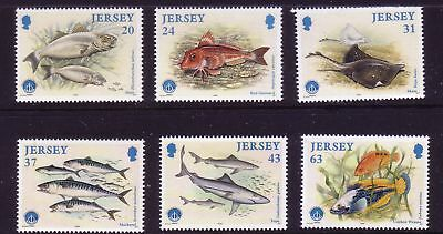 1998 Jersey. Marine Life, Year of the Ocean. Fish SG 864/69 MNH