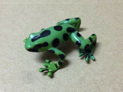 Colorata animal figure Collection - Amazon Green and black poison dart frog