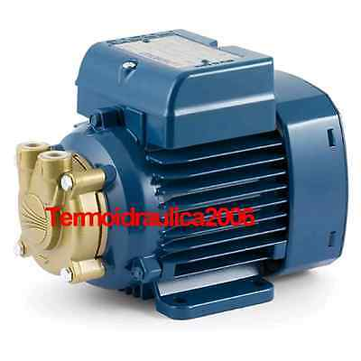 Electric Water Pump with peripheral impeller PVm55 0,5Hp 240V Pedrollo