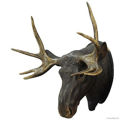 a livesize plaster moose head with real antlers