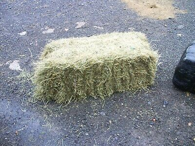 hay bales, pet bedding/feed