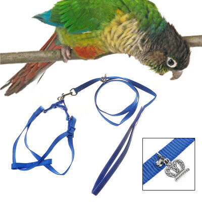Adjustable Parrot Leash Pet Harness Outdoor Anti Bite Training Rope Flying Band
