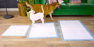 150 22x23 Small Dog Puppy Training Wee Potty Pads Underpads Stay Dry 5 layers