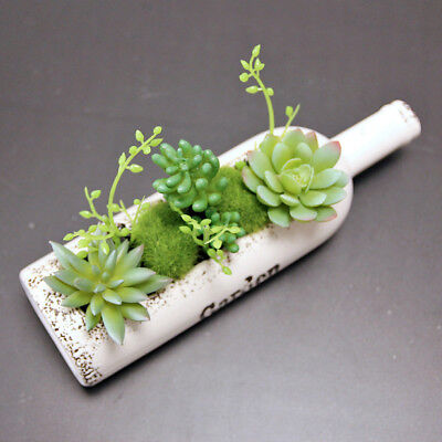 1PC Succulent Plants With Wine bottle Shape Potted plants Home Decoration F O1Q1