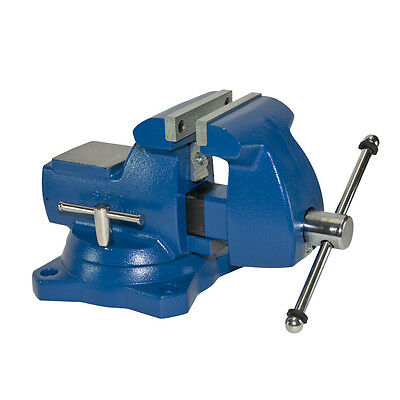 Blue 5-in Gray Iron Swivel Base Mechanic's Vise with Large Anvil Work Surface