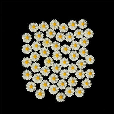 50pcs white daisy flower resin flatback cabochon DIY jewelry decoration M