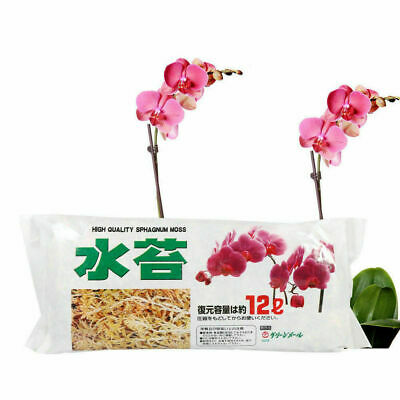 12L Long Fiber Sphagnum Moss Moisturizing Fertilizer For Phalaenopsis Orchid