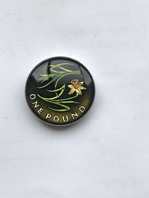 enamelled coin 1 one pound coin wales flower hand painted lovely