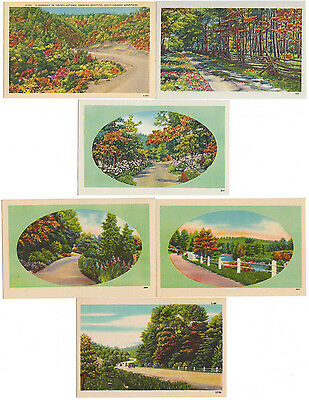 6 Unused Unposted Linen Scenic Southern Roads in Autumn Postcards (Vintage Cars)