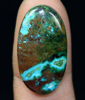 19.70 Cts. Chrysocolla Oval Cabochon Loose Gemstone For Ring Or Pendant