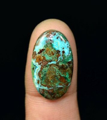 16.75 Cts. Chrysocolla Oval Cabochon Loose Gemstone For Ring Or Pendant