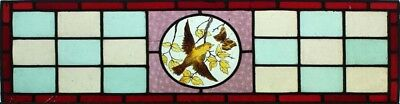 Pretty Original English Painted Bird & Butterfly Stained Glass Window