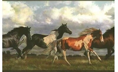 Wallpaper Border Running Wild Horses Horse Country Mountain Stampede