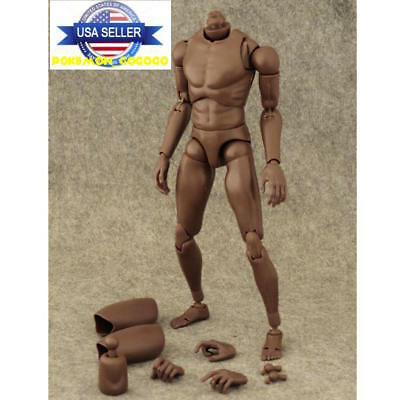 ZY TOYS 1/6 Scale Narrow Shoulder Male African Figure For TTM18 TTM19 ❶USA❶