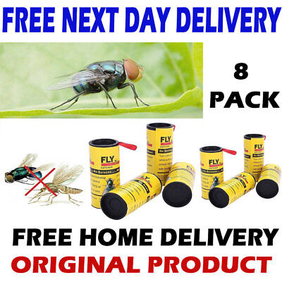 Sticky Fly Catcher Bug Wasp Insect - Poison Free Paper Trap Catchers Traps