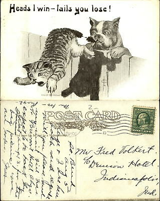 Heads I Win Tails You Lose~artist Fred Cavally~bulldog cat by tail~1910 comic