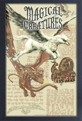 HARRY POTTER MAGICAL CREATURE 13x19 FRAMED GELCOAT POSTER MOVIE GIFT NEW MAGIC!!
