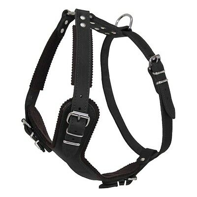 EARTHBOUND ox leather dog harness ! Black ! Large 81cm - 95cm ! NEW