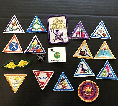 Girl Scouts Try it Badges Patches Pins Membership Cards Lot