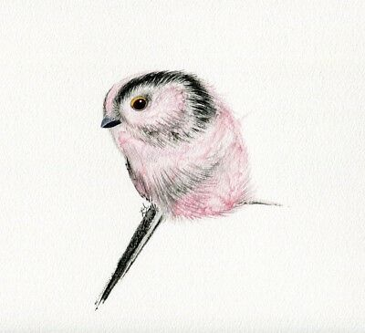 Original Watercolour Long-tailed tit Painting by Emma Hogan Wall Pink Bird Art