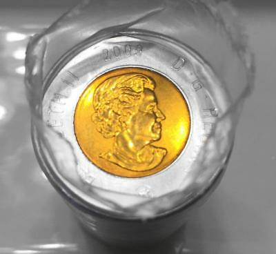 2009 $2 Canada Polar Bear Toonie Original Roll **No Tax**