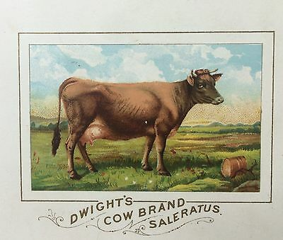 1880s Dwight's COW Brand BAKING SODA Saleratus Victorian Advertising TRADE CARD