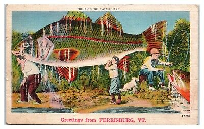 1952 Greetings from Ferrisburg, VT Comic Exaggerated Fish Fishing Postcard