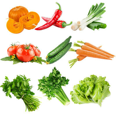 Egrow 10 Kinds Mixed Vegetable Seeds Real Green Non-gmo Organic Vegetable Seeds