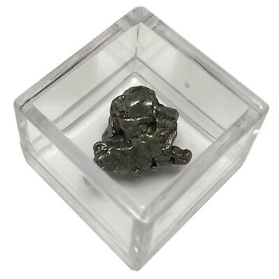 Campo del Cielo Meteorite with COA Iron Space Rock FAST FREE USA SHIPPING m7a
