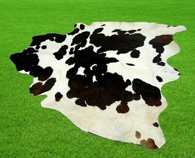 "New Cowhide Rugs Area Cow Skin Leather 19.88 sq.feet (53""x54"") Cow hide A-1869"
