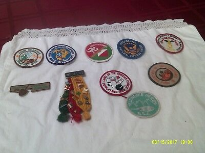 Boy Scout Patches and Webelos Pins
