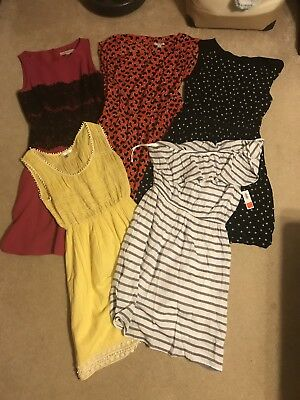 NAMEBRAND Career/Summer Dress Lot- Small