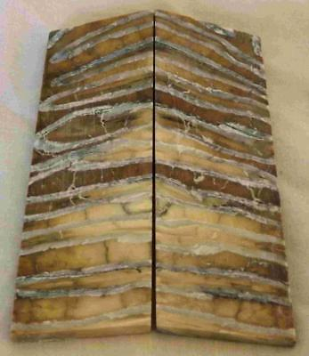 Siberian Mammoth Tooth Scales Stabilized 92 mm x 29 mm x 4.3 mm #MT22