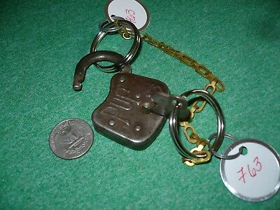 Pup Padlock With Embossed Dog Head And Working Key