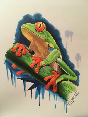 Realistic Tree Frog Drawing With Colored Pencils