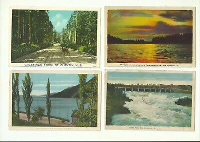Lot Of 4 New Brunswick, Canada Vintage Postcards