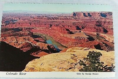 Postcard Colorado River From Dead Horse Point Moab Utah Vintage