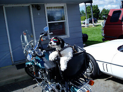 2000 Harley-Davidson Dyna  Harley Davidson Dyna Low Rider 2000 (Local Pickup Only)