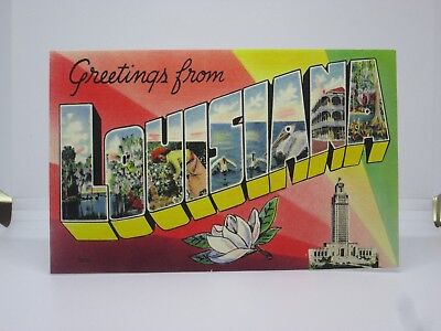 Vintage Postcard Greetings from Louisiana Large Letter Colourpicture