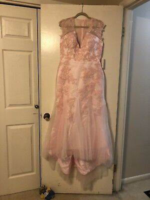 Light Pink Lace Tulle Wedding/Formal Size 10-12 Dress