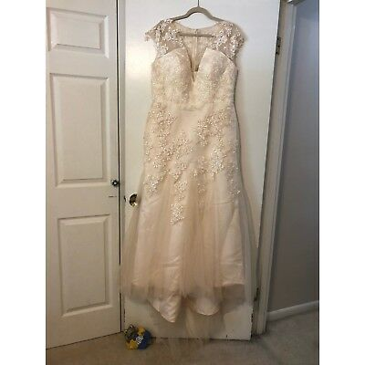 Champagne Lace Tulle Wedding/Formal Size 16 Dress