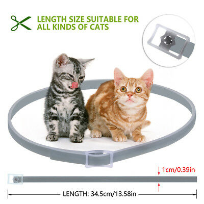 Cat Collar Tick Flea Anti Insect Mosquito Waterproof Adjustable 8Months Protect