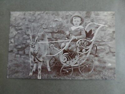 social history postcard real  photograph boy in cart pram or pushchair goat pull