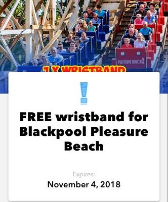 2 Blackpool Pleasure Beach Wristbands