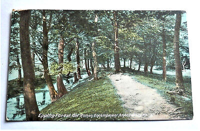 Old British Pre Ww2 Postcard *epping Forest* Unposted , Nice