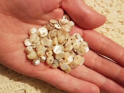 """Antique Vintage 83 TINY mother of pearl BUTTON lot doll clothing 2 hole MOP 1/4"""""""