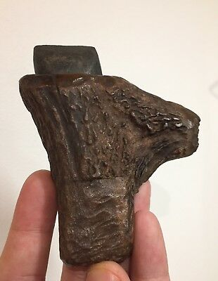 Museum Neolithic Stone Axe With Antler Sheath!! Rare !!
